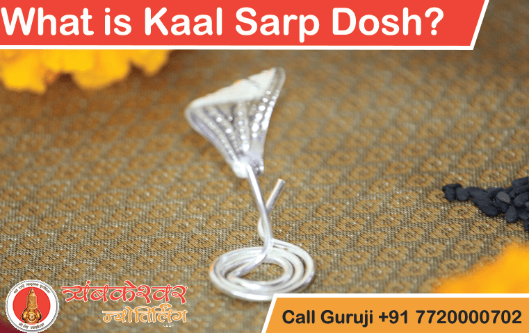 What is Kaal Sarp Dosh or What is Kaal Sarp Yog?