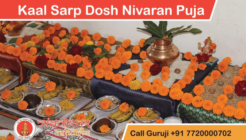 Kaal Sarp Dosh Nivaran Puja Trimbakeshwar Temple Pandit