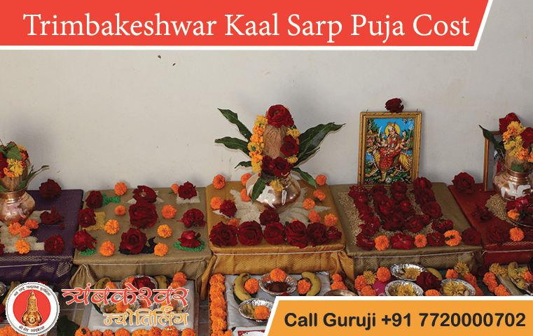 Kalsarp Puja Cost or Price