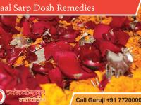 Kaal Sarp Dosh Remedies