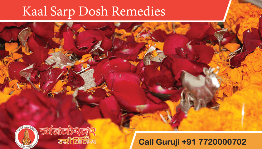 Kaal Sarp Dosh Remedies