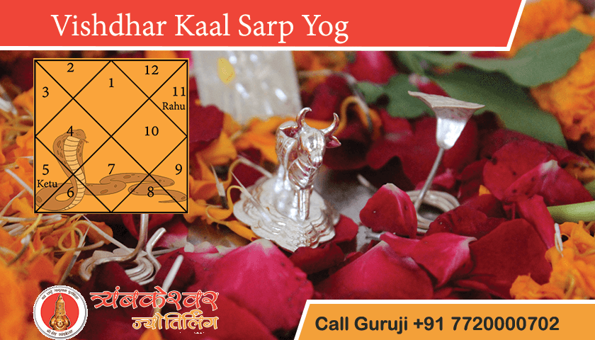 Vishdhar Kaal Sarp Yog Positive Effects, Remedies and Benefits